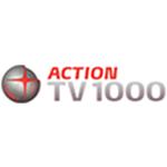 TV1000 Action  - міжнародний канал, повністю присвячений кінематографу. Його дивляться люди віком від 16 до 60 років. Цільова аудиторія - люди, які люблять дивитись кіно і серіали. Програма складається з блокбастерів, найкасовіших фільмів, кінокартин, які вже встигли стати класикою.