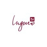 indigo_tv_channel_ua